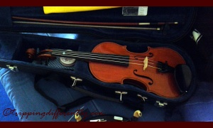 This new one is a rich dark orange-red-brown colour... his teacher thinks this sounds great but i miss the sound of his old one... still it is a good violin...