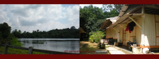 Won't you like to live in such tranquility? The simple kampong life.