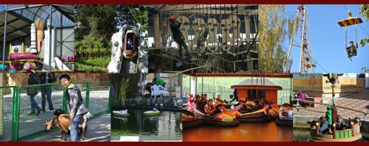 The rides and activities we did try.