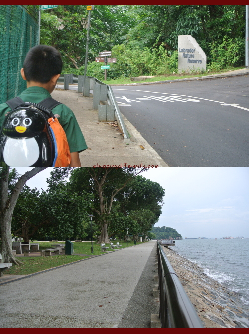 It was a very nice walk, great place for joggers, children to play and pet owners to walk their dogs...