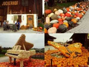 Top Left: 1st sight of the farm, Top Right: Lots of pumpkins everywhere!! All for sale, Bottom Right: giant butterfly made of pumpkins - you could ride on it (if they let you), Bottom Left: giant piano which plays recorded music, it's so big , my head only comes up to the keys.