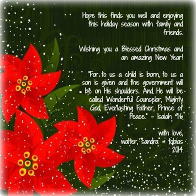christmas20141225