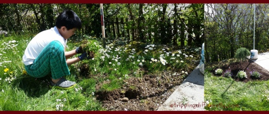 springholsreview20160506h