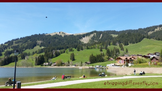 Isn't this scenery just to die for? LOVE IT! It was such a gorgeous day!